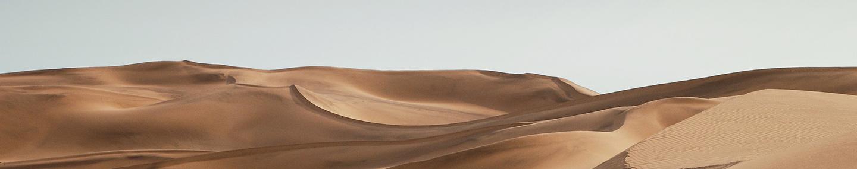 Цветение в пустыне