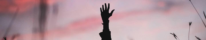 Chciwe dłonie