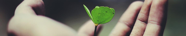 An Open, Generous Heart