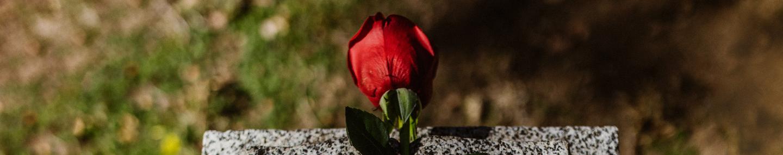 Hoffnung in der Trauer